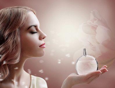 Elegante Online Parfümerie